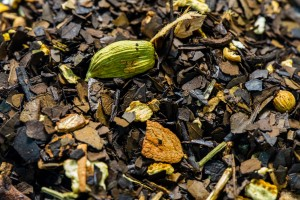 Yerba Mate Winter Chai Black